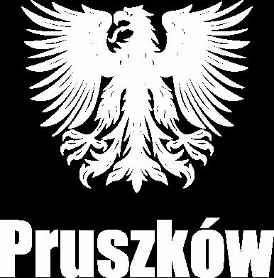 Print Bluza (raglan) Pruszków - PrintSalon
