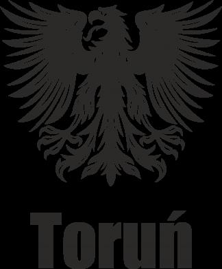 Print Etui na iPhone 11 Pro Max Toruń - PrintSalon