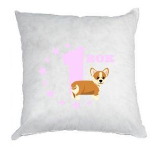 Pillow 1 year