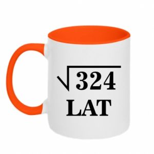 Two-toned mug 324 years old