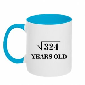 Two-toned mug 324 years old
