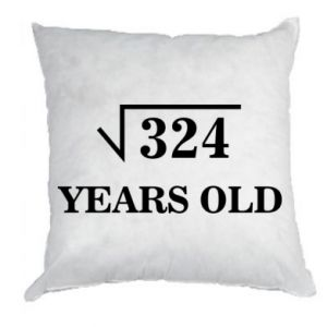 Pillow 324 years old
