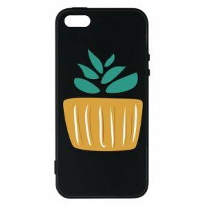 Etui na iPhone 5/5S/SE Aloe in a pot