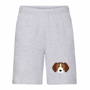 Men's shorts Beagle breed - PrintSalon