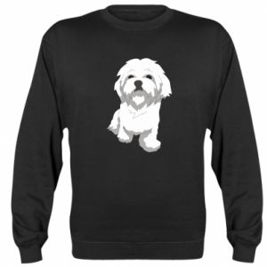 Sweatshirt Beautiful white dog