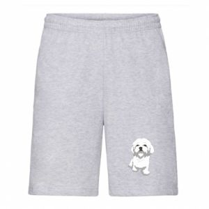 Men's shorts Beautiful white dog