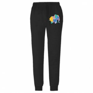 Męskie spodnie lekkie Bright elephant abstraction - PrintSalon