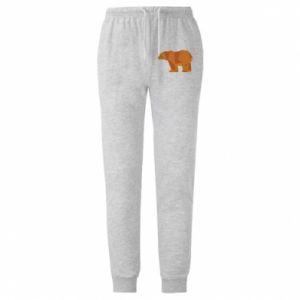 Męskie spodnie lekkie Brown bear abstraction - PrintSalon