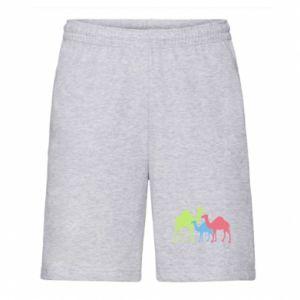 Men's shorts Camel family - PrintSalon