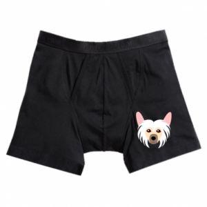 Boxer trunks Chinese Crested Dog - PrintSalon