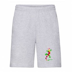 Men's shorts Colorful lizard - PrintSalon
