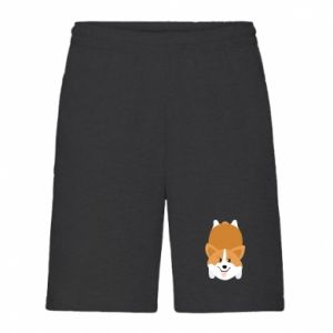 Men's shorts Corgi - PrintSalon