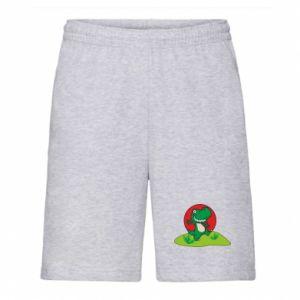 Men's shorts Dino