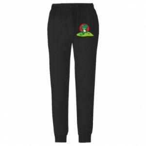 Męskie spodnie lekkie Dino