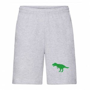 Men's shorts Dinosaur in a garland
