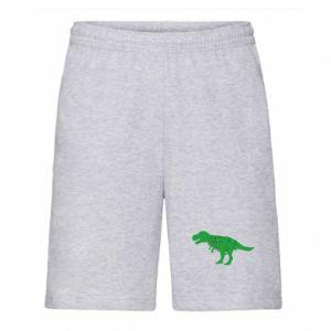 Męskie szorty Dinozaur w girlandzie