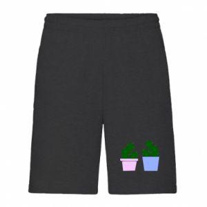Men's shorts Two large cacti