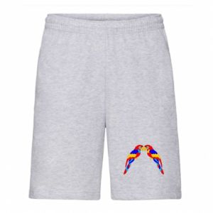 Men's shorts Two bright parrots