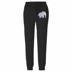 Męskie spodnie lekkie Elephant abstraction - PrintSalon