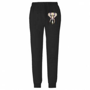 Męskie spodnie lekkie Elephant geometry