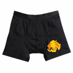 Boxer trunks Golden Phoenix - PrintSalon