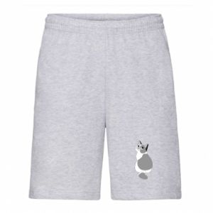Men's shorts Gray cat with big eyes - PrintSalon