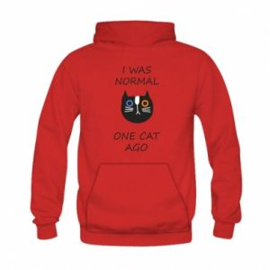 Kid's hoodie I was normal one cat ago