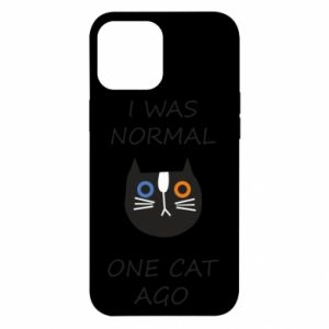 iPhone 12 Pro Max Case I was normal one cat ago