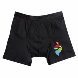 Boxer trunks Bright parrots