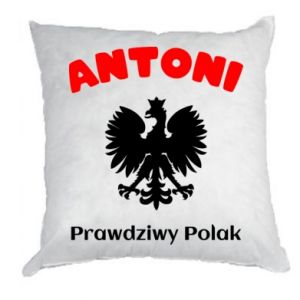 Pillow Antoni is a real Pole