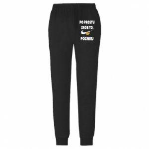 Męskie spodnie lekkie Just do it later