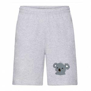 Męskie szorty Koala - PrintSalon