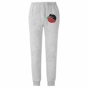 Męskie spodnie lekkie Cat on strawberry