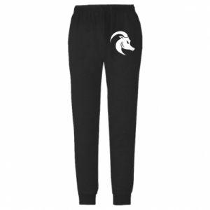 Męskie spodnie lekkie Capricorn