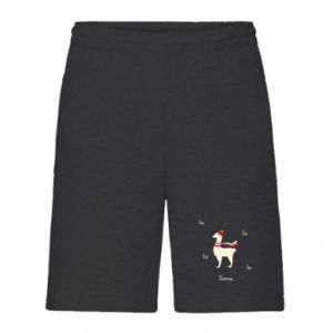 Men's shorts Llama in a hat
