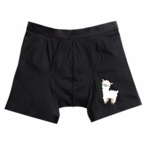 Boxer trunks Lamb with a sprig - PrintSalon