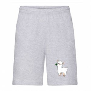 Men's shorts Lamb with a sprig - PrintSalon