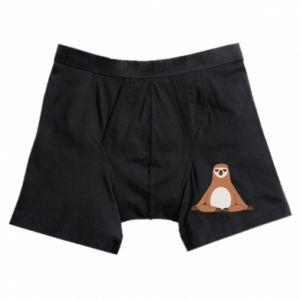 Boxer trunks Sloth
