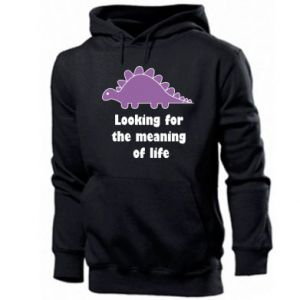 Men's hoodie Looking for the meaning of life