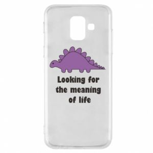 Etui na Samsung A6 2018 Looking for the meaning of life