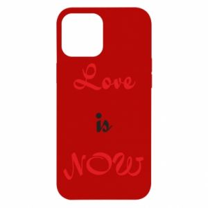 Etui na iPhone 12 Pro Max Love is now