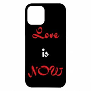 Etui na iPhone 12/12 Pro Love is now