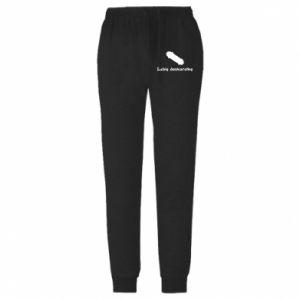 Męskie spodnie lekkie Lubię deskorolkę - PrintSalon