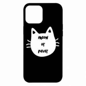 iPhone 12 Pro Max Case Meow or never