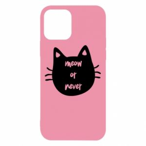 iPhone 12/12 Pro Case Meow or never