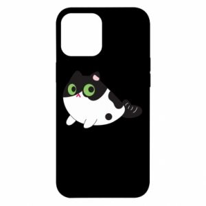 Etui na iPhone 12 Pro Max Monochrome mermaid cat