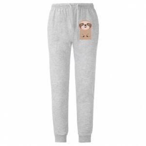 Męskie spodnie lekkie Naive sloth - PrintSalon