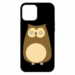 Etui na iPhone 12 Pro Max Owl with big eyes