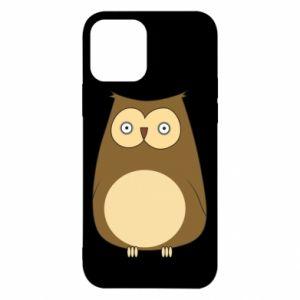 Etui na iPhone 12/12 Pro Owl with big eyes