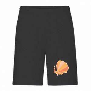 Men's shorts Peacock Abstraction - PrintSalon